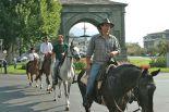 horses_heaven_vda_raduno_eq_2007_1